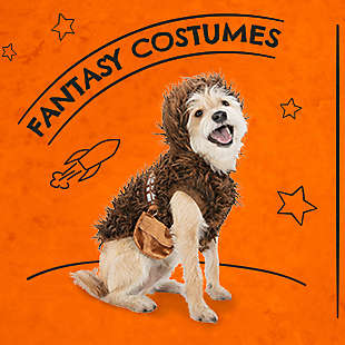 halloween pets costumes toys treats more at petsmart