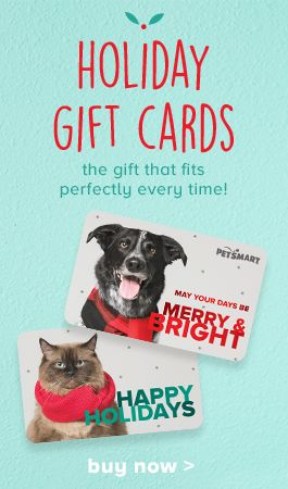 shop holiday gift cards