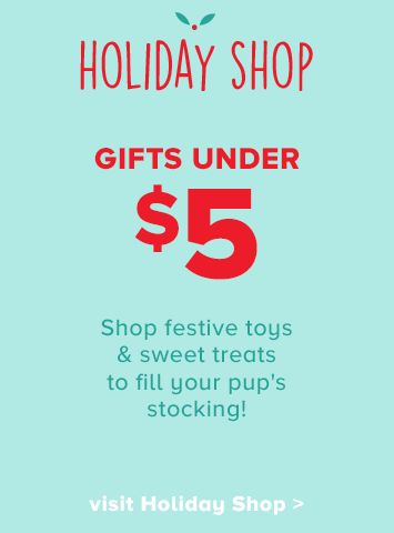 dog gifts under $5 in our Holiday Shop