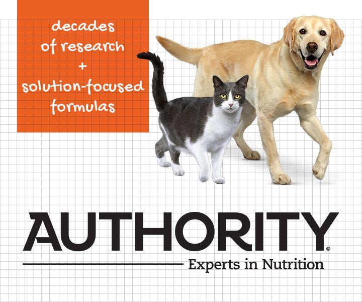 Authority Pet Food Treats Petsmart