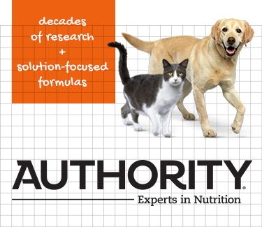 Authority Banner