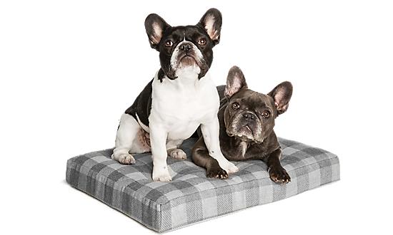 Dog Beds Orthopedic Amp Heated Dog Beds Petsmart