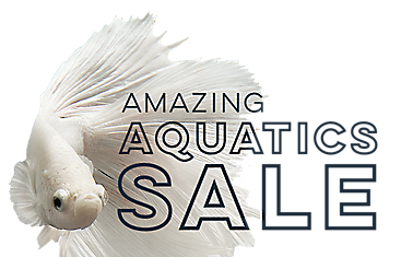 AMAZING AQUATICS SALE