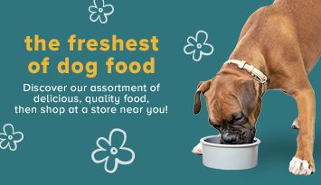 the freshest of dog food Discover our assortment of delicious, quality food, then shop at a store near you!