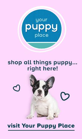Shop all things puppy...right here! Visit Your Puppy Place.