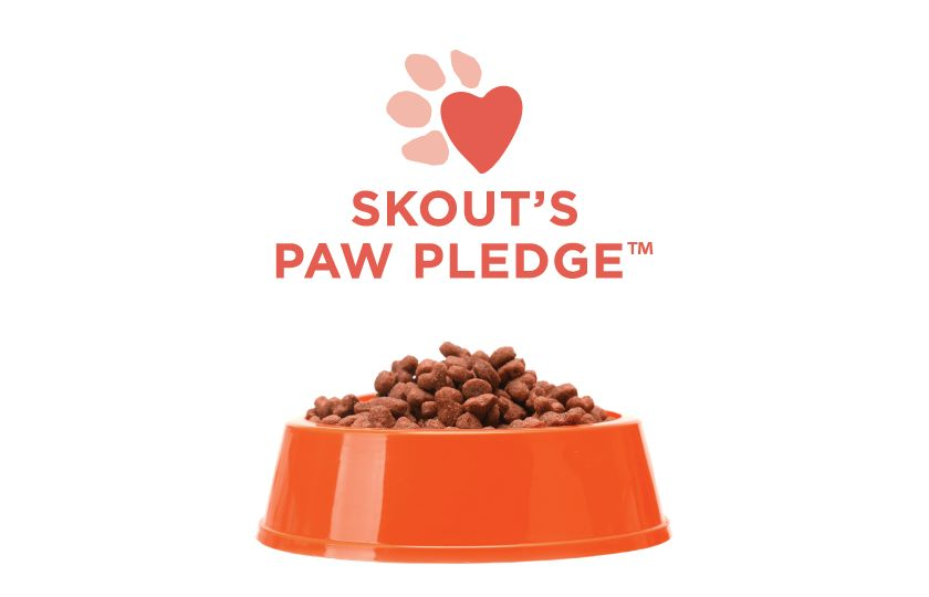 Skout's Honor Pet Cleaning Products: Pet Stain & Odor Eliminator