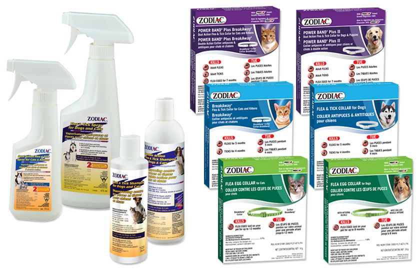 sprays, shampoos and collars