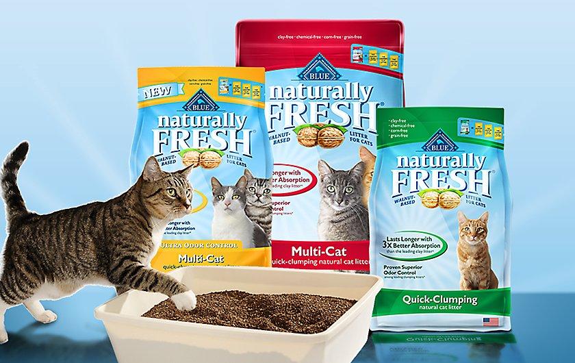 Taste Of The Wild Cat Food Petsmart