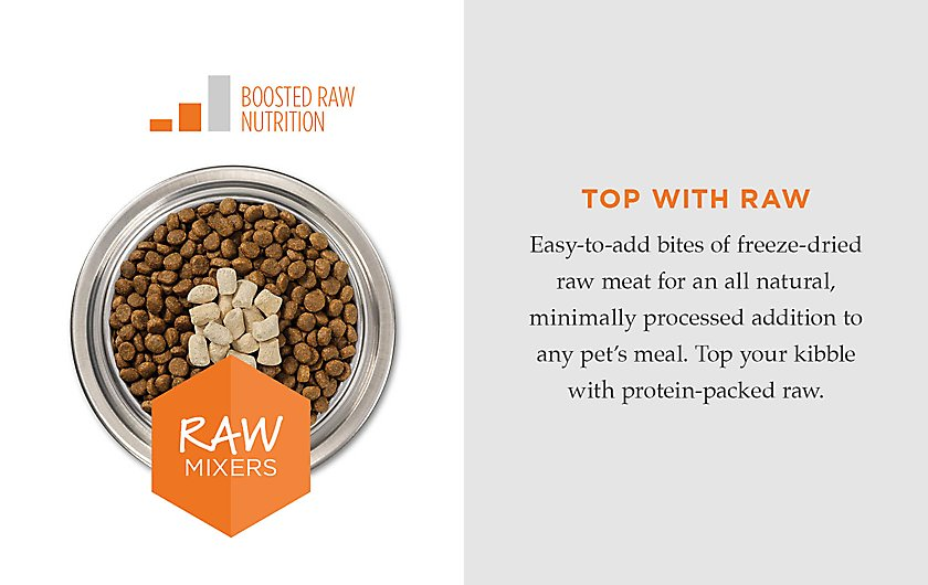 mealtime excitement with freeze-dried raw