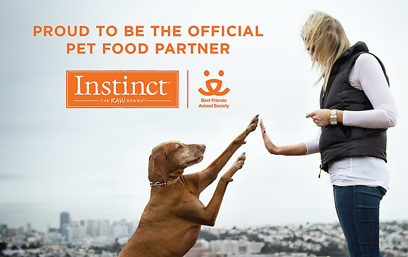 official pet food partner