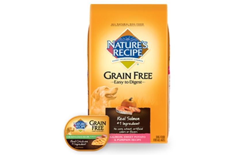 Easy Grain Free Dog Treats