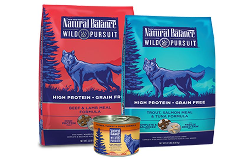 Best Dog Food You Can Buy At Petsmart