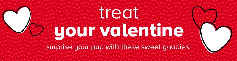 treat your valentine surprise your pup with these sweet goodies!