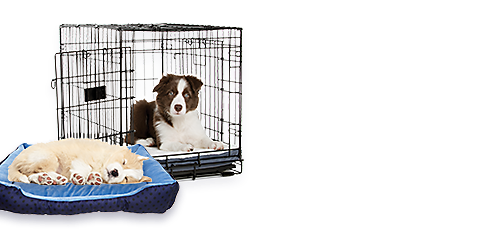 Puppy Care Center New Puppies 101 Guide Petsmart