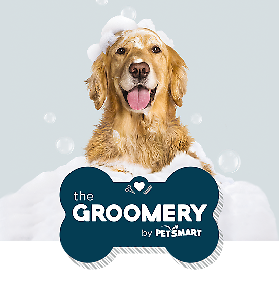 Dog grooming self wash at the groomery by petsmart convenient self dog wash stations natural food treats book now some alt text solutioingenieria Gallery