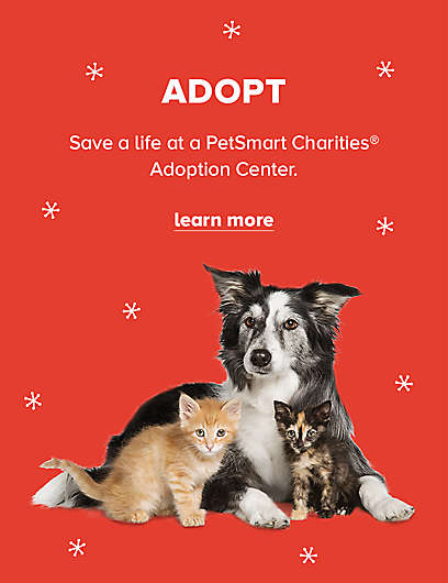 Pet Food Donations Buy A Bag Give A Meal To Shelters