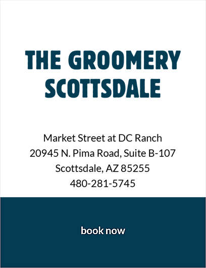 Dog grooming self wash at the groomery by petsmart the groomery at scottsdale solutioingenieria Images