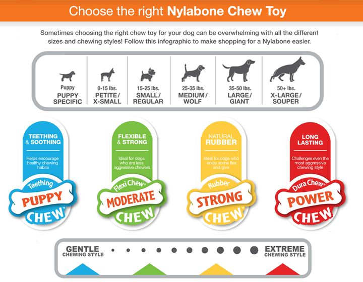 Nylabone® DuraChew® Chew Dog Toy