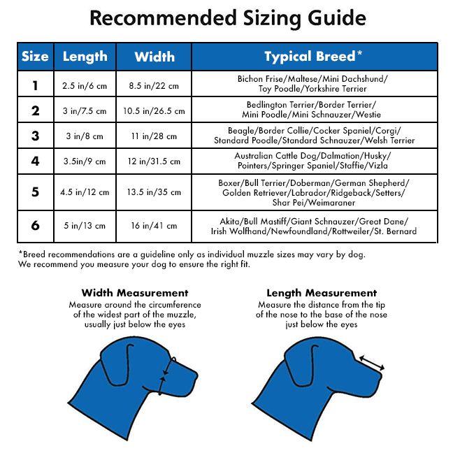 Baskerville Ultra Dog Muzzle | dog Training Collars, Leashes ...