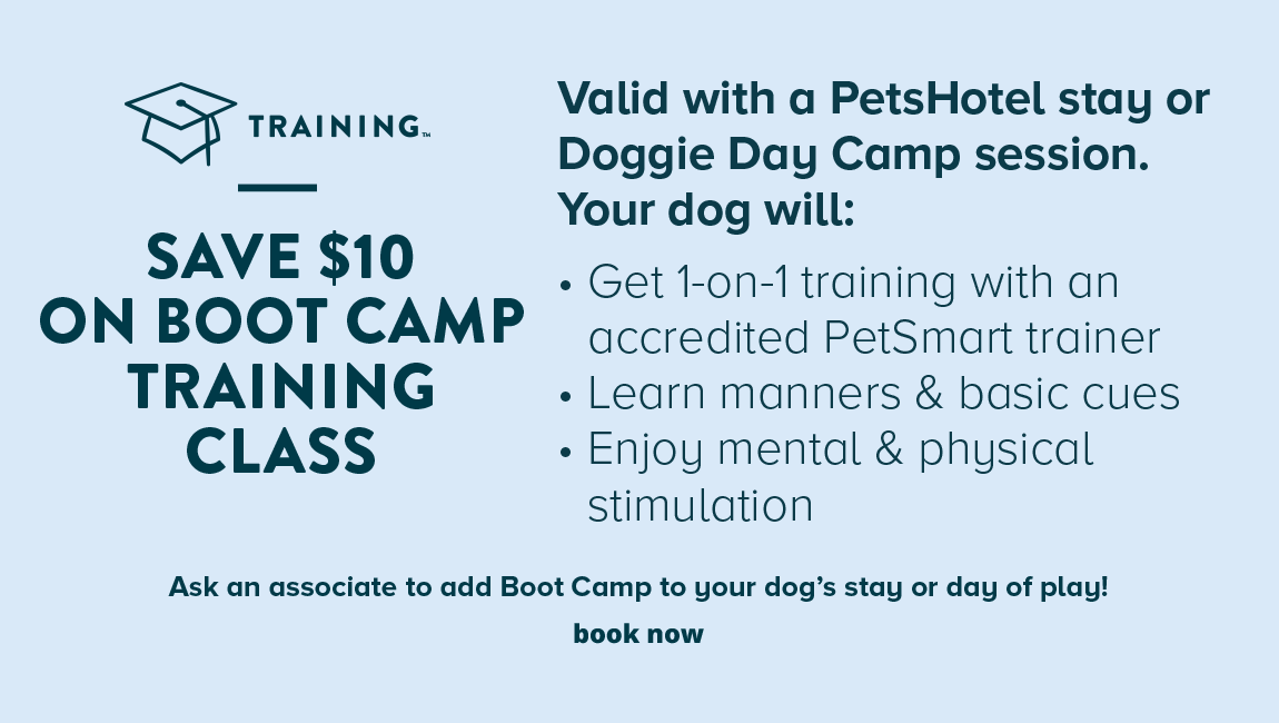 SAVE $10 ON BOOT CAMP TRAINING CLASS Valid with a PetsHotel stay or Doggie Day Camp session. Your dog will:                     * Get 1-on-1 training with an accredited Petsmart trainer                     *Learn manners & basic cues                     *Enjoy mental & physical stimulation                              Ask an associate to add Boot Camp to your dog's stay or day of play!