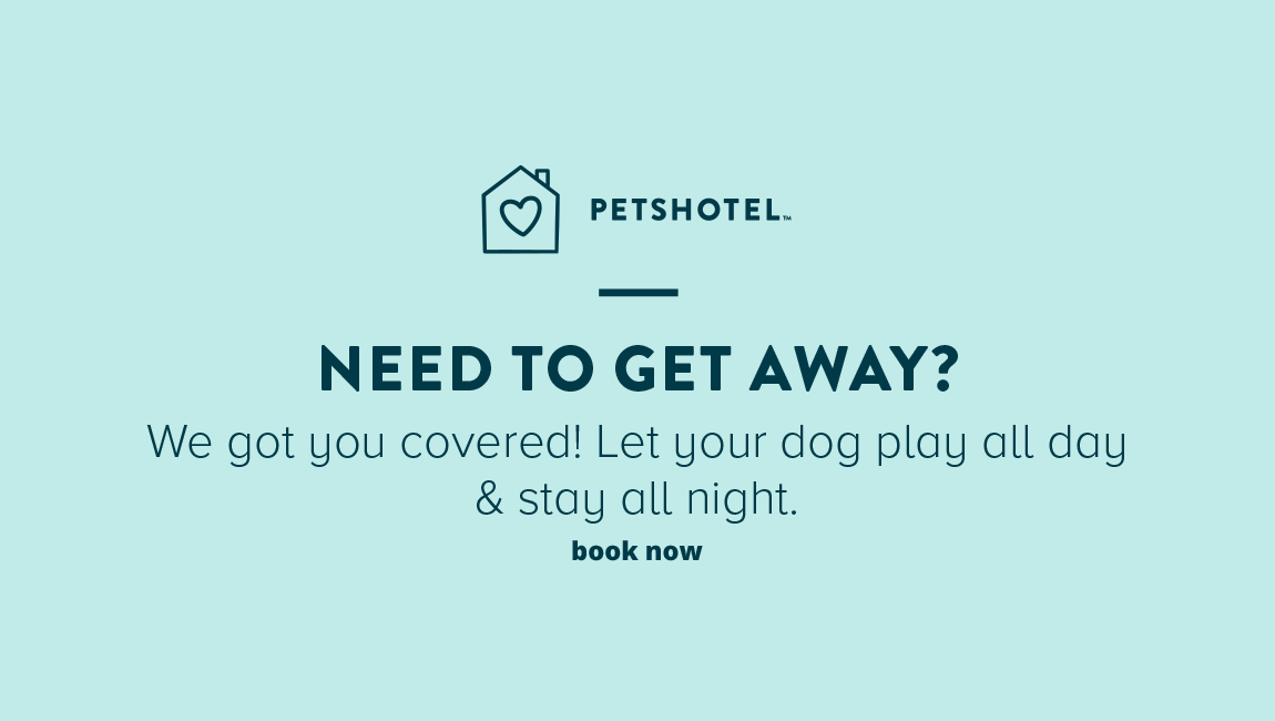 NEED TO GET AWAY? We got you covered! Let your dog play all day & stay all night.