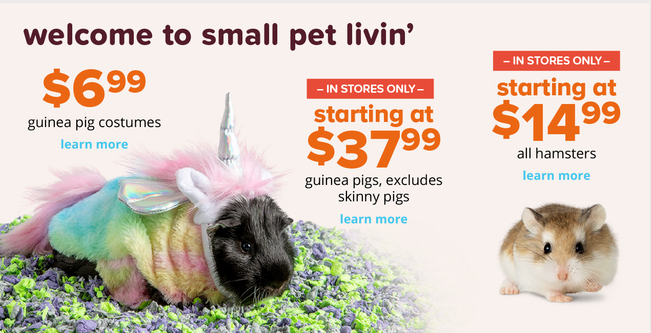 WELCOME TO SMALL PET LIVIN'