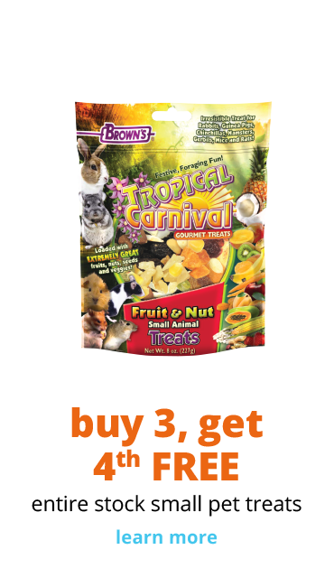 Buy 3, Get 4th free entire stock small pet treats