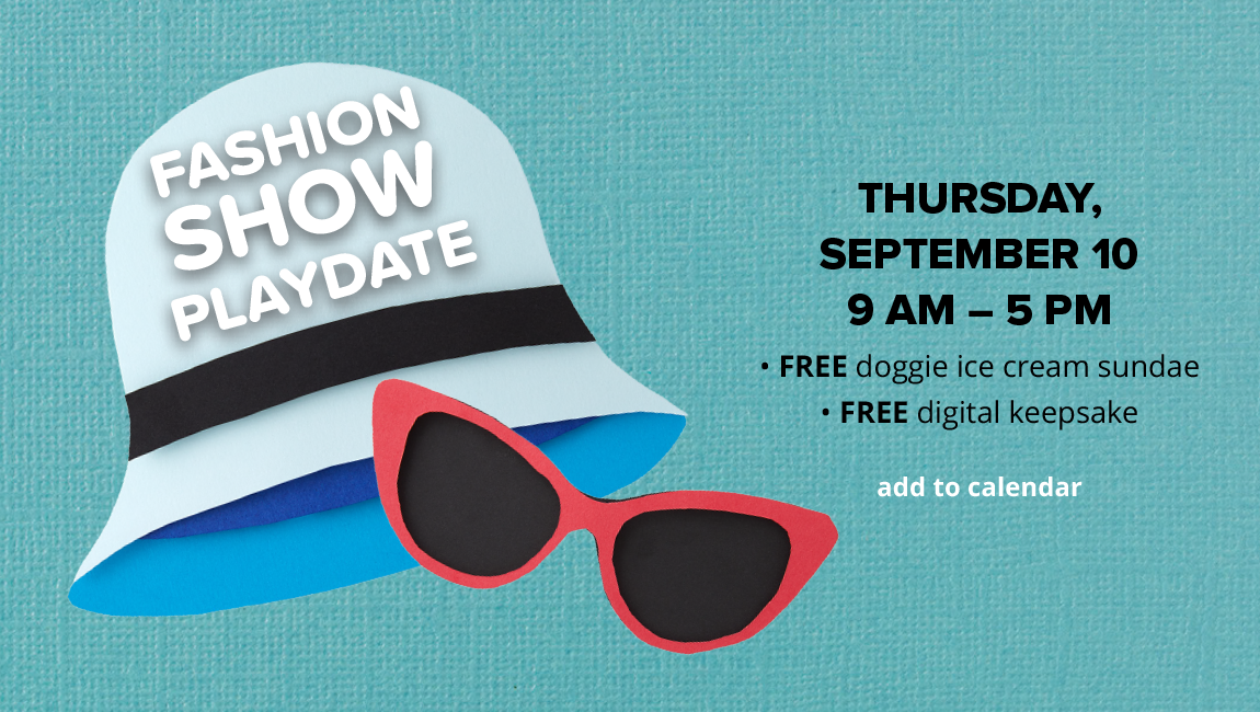FASHION SHOW PLAYDATE THURSDAY, SEPTEMBER 10, 9 AM - 5 PM. FREE doggie ice cream sundae.FREE digital keepsake
