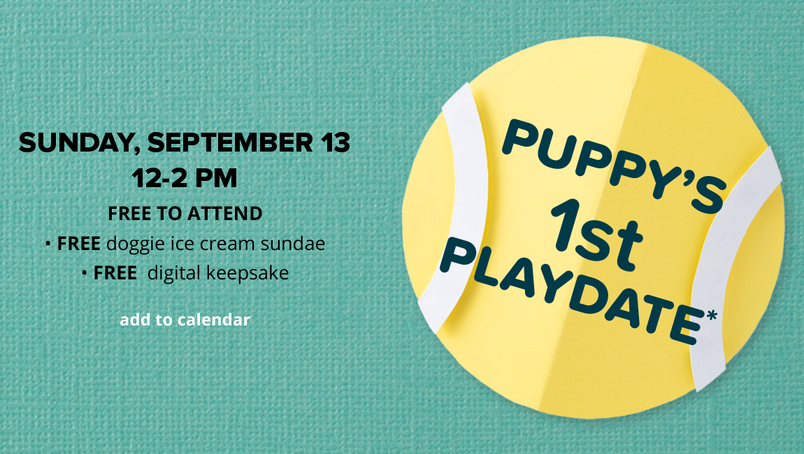 Puppy's First Playdate SUNDAY, SEPTEMBER 13, 12-2 PM. FREE TO ATTEND. FREE doggie ice cream sundae. FREE digital keepsake