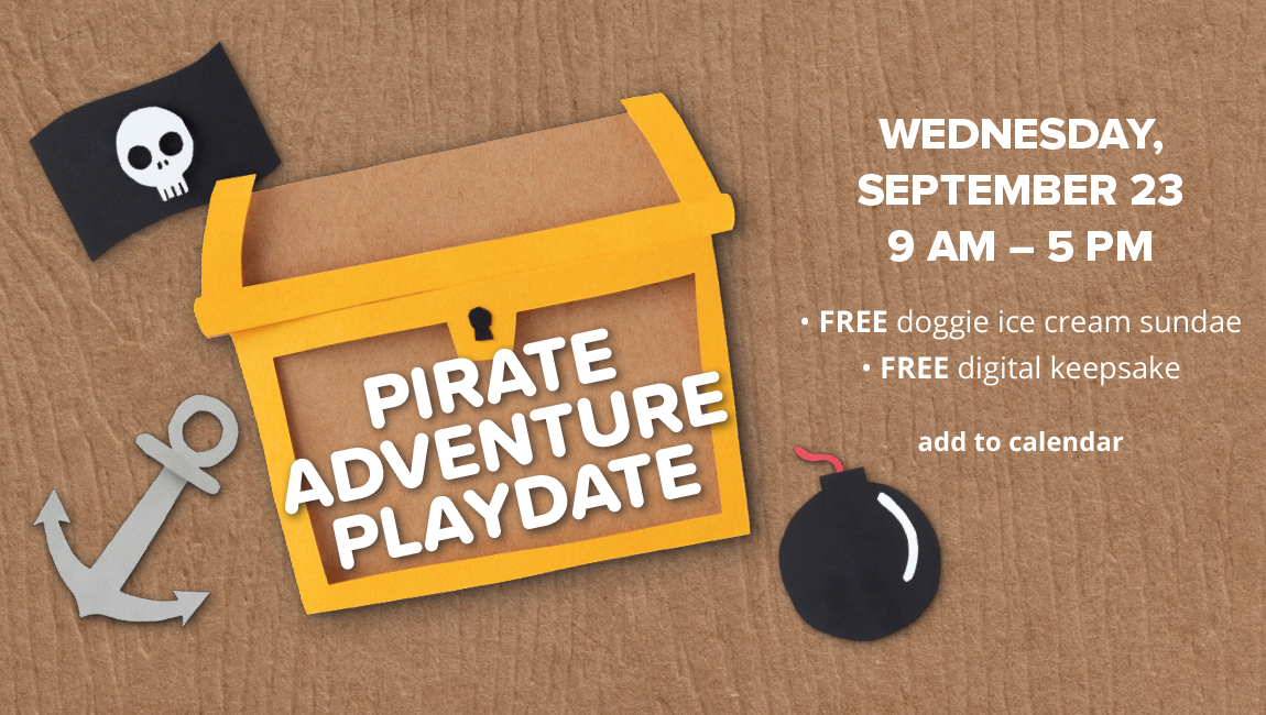 PIRATE ADVENTURE PLAYDATE WEDNESDAY, SEPTEMBER 23, 9 AM -5 PM. FREE doggie ice cream sundae. FREE digital keepsake