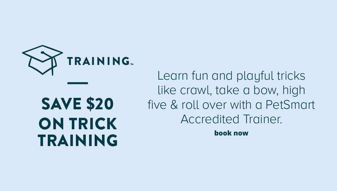 TRAINING SAVE $20 ON TRICK TRAINING. Learn fun and playful tricks like crawl, take a bow, high five & roll over with a PetSmart Accredited Trainer.