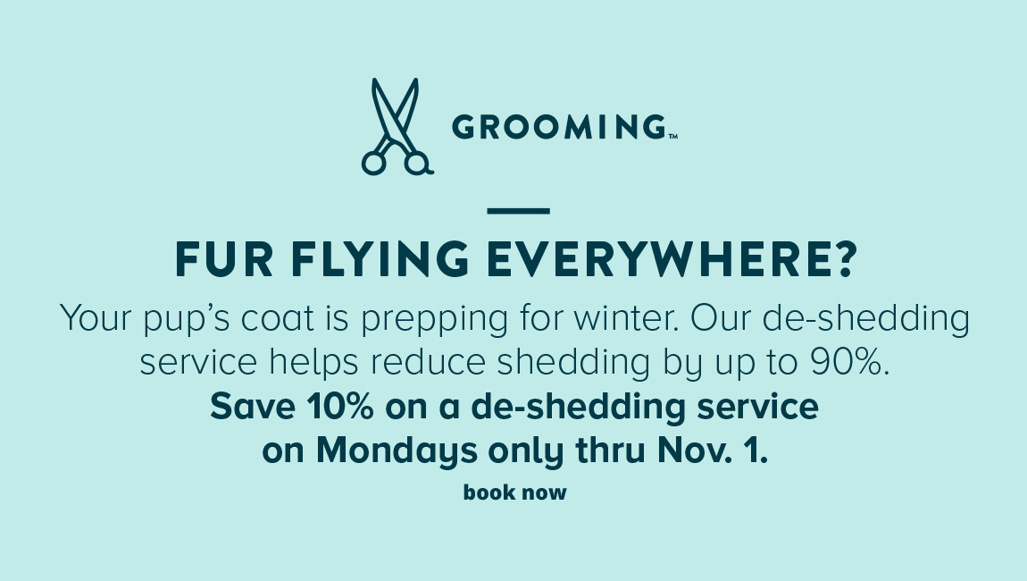 GROOMING Fur Flying Everywhere? Your pup's coat is prepping for winter. Our de-shedding service helps reduce shedding by up to 90%. Save 10% off a de-shedding service on Mondays only until Nov. 1.