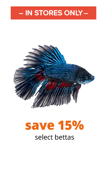 save 15% select bettas