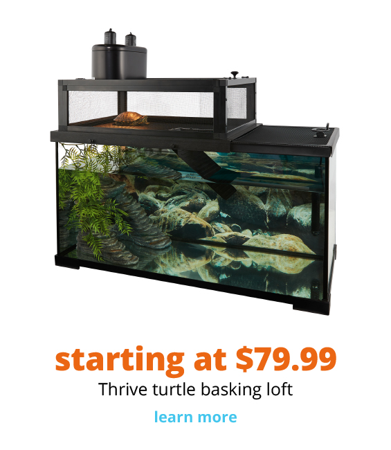 starting at $79.99 Thrive turtle basking loft