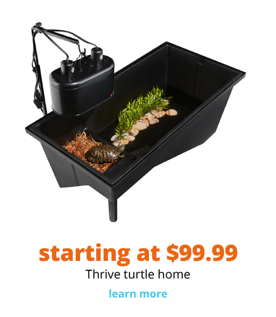 starting at $99.99 Thrive turtle home