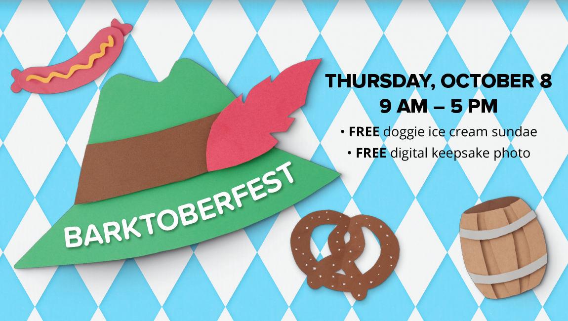 THURSDAY, OCTOBER 8 9 AM - 5 PM FREE doggie ice cream sundae FREE digital keepsake photo