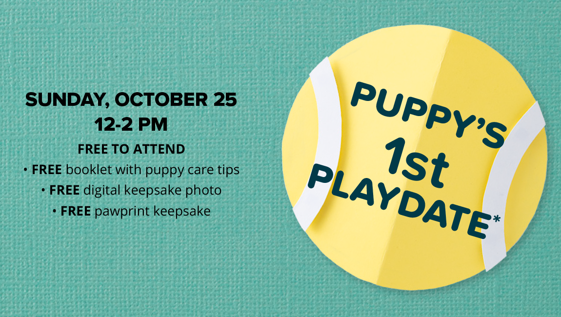 SUNDAY, OCTOBER 25 12-2 PM Free to attend FREE booklet with puppy care tips FREE digital keepsake photo FREE pawprint keepsake