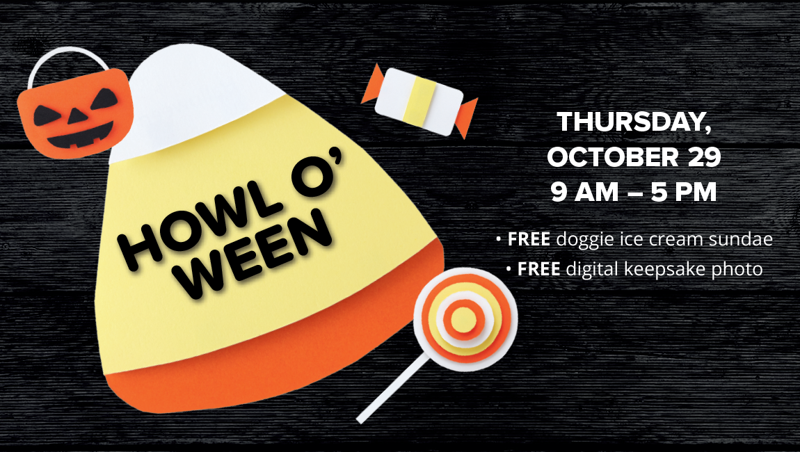 THURSDAY OCTOBER 29 9 AM - 5 PM FREE doggie ice cream sundae FREE digital keepsake photo