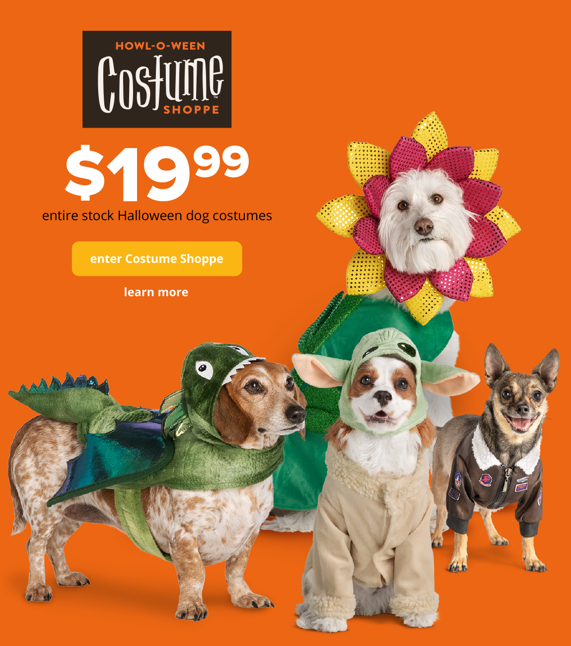 $19.99 entire stock Halloween dog costumes *enter Costume Shoppe*
