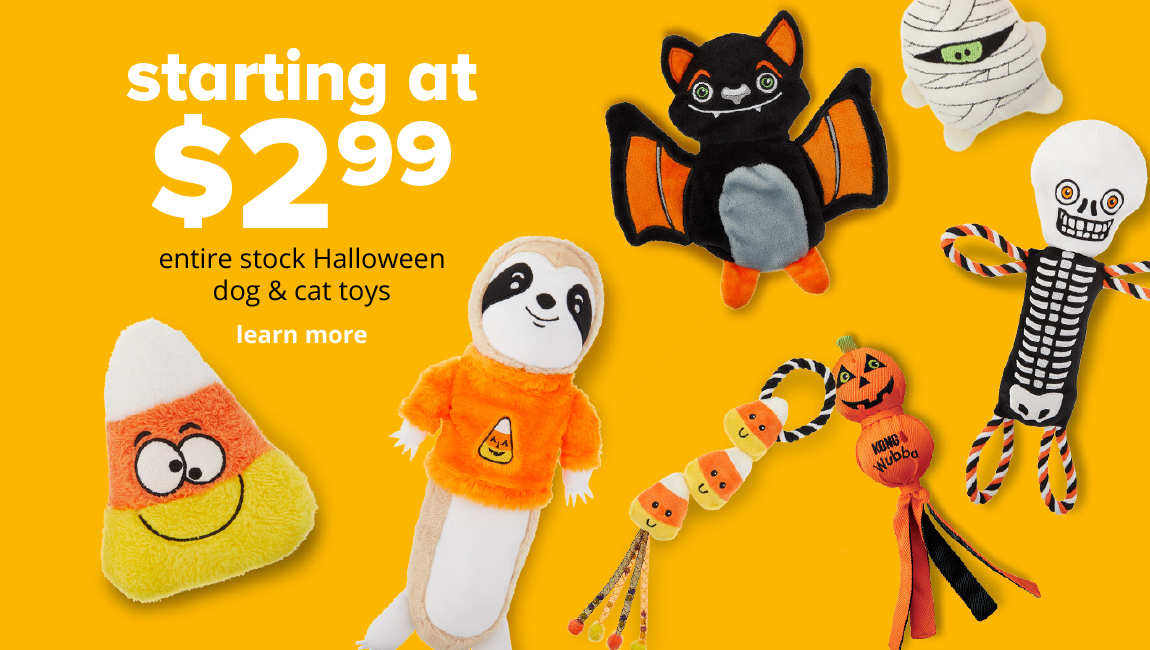 starting at $2.99 entire stock Halloween dog & cat toys