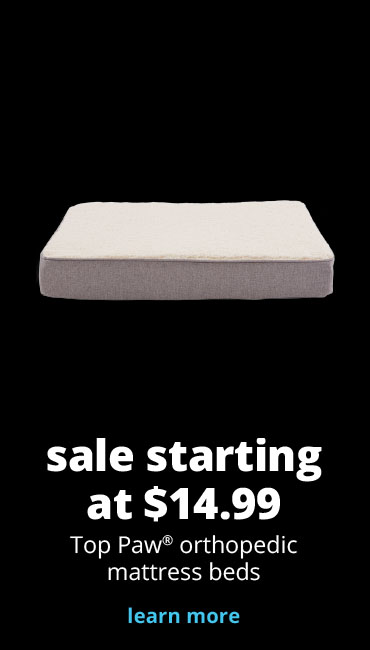 sale starting at $14.99 Top Paw® orthopedic mattress beds