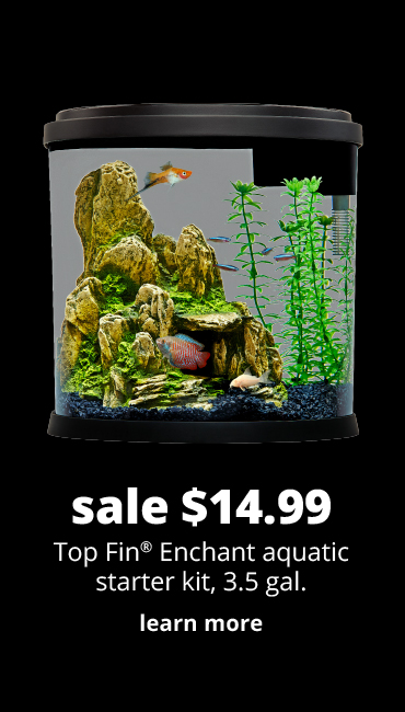 sale $14.99 Top Fin® Enchant aquatic starter kit, 3.5 gal.