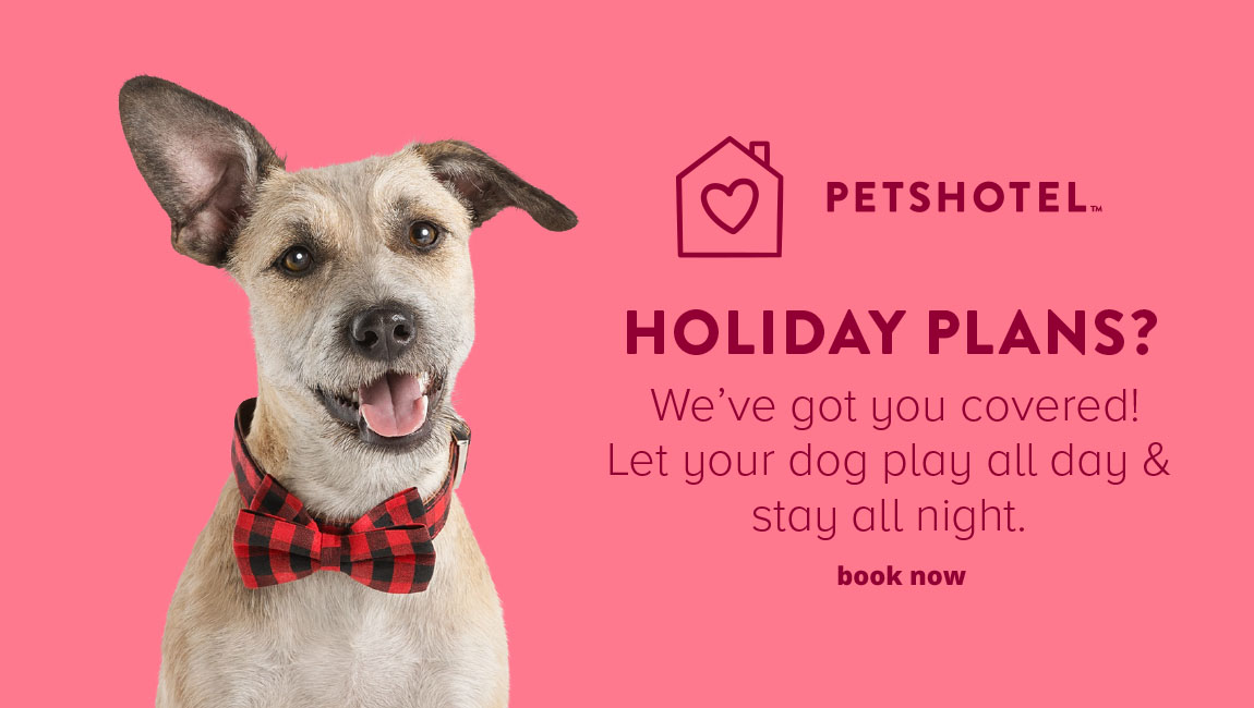 PETSHOTEL HOLIDAY PLANS? We've got you covered! Let your dog play all day & stay all night. Book now