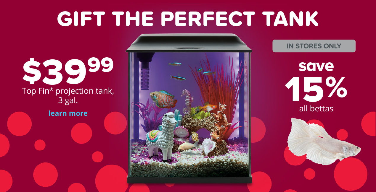 $39.99 Top Fin® projection tank, 3 gal.