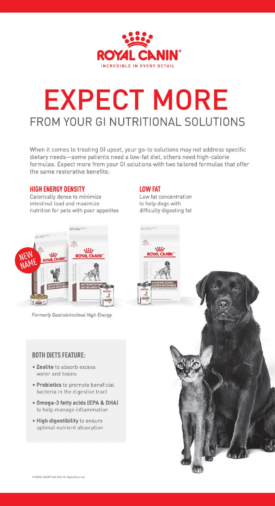 Royal Canin®                          INCREDIBLE IN EVERY DETAIL                         EXPECT MORE                         FROM YOUR GI NUTRITIONAL SOLUTIONS                                                  When it comes to treating GI upset, your go-to solutions may not address specific dietary needs - some patients need a low-fat diet, others need high-calorie formulas. Expect more from your GI solutions with two tailored formulas that offer the same restorative benefits:                                                  HIGH ENERGY DENSITY                         Calorically dense to minimize intensinal load and maximize nutrition for pets with poor appetites                         LOW FAT                         Low fat concentratiion to help dogs with difficulty digesting fat                         BOTH DIETS FEATURE:                         Zeolite to absorb excess water and toxins                         Prebiotics to promote beneficial bacteria in the digestive tract                         Omega-3 fatty acids (EPA & DHA) to help manage inflammation                         High digestibility to ensure optimal nutrient absorption