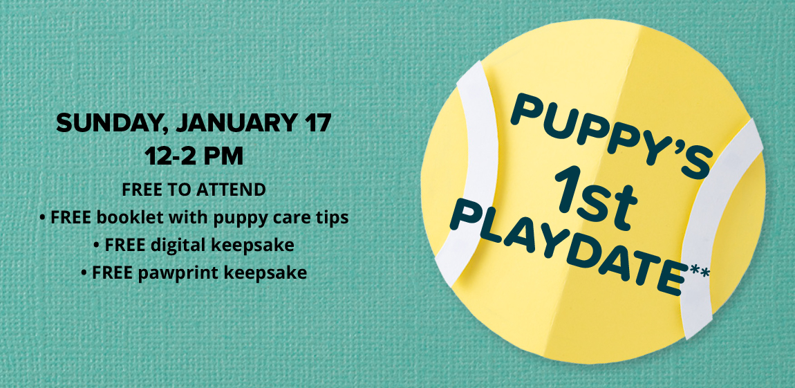 Puppy's 1st Playdate**  1/17/21 SUNDAY, JANUARY 17                             12-2 PM FREE TO ATTEND                             FREE booklet with puppy care tips                             FREE digital keepsake                              FREE pawprint keepsake