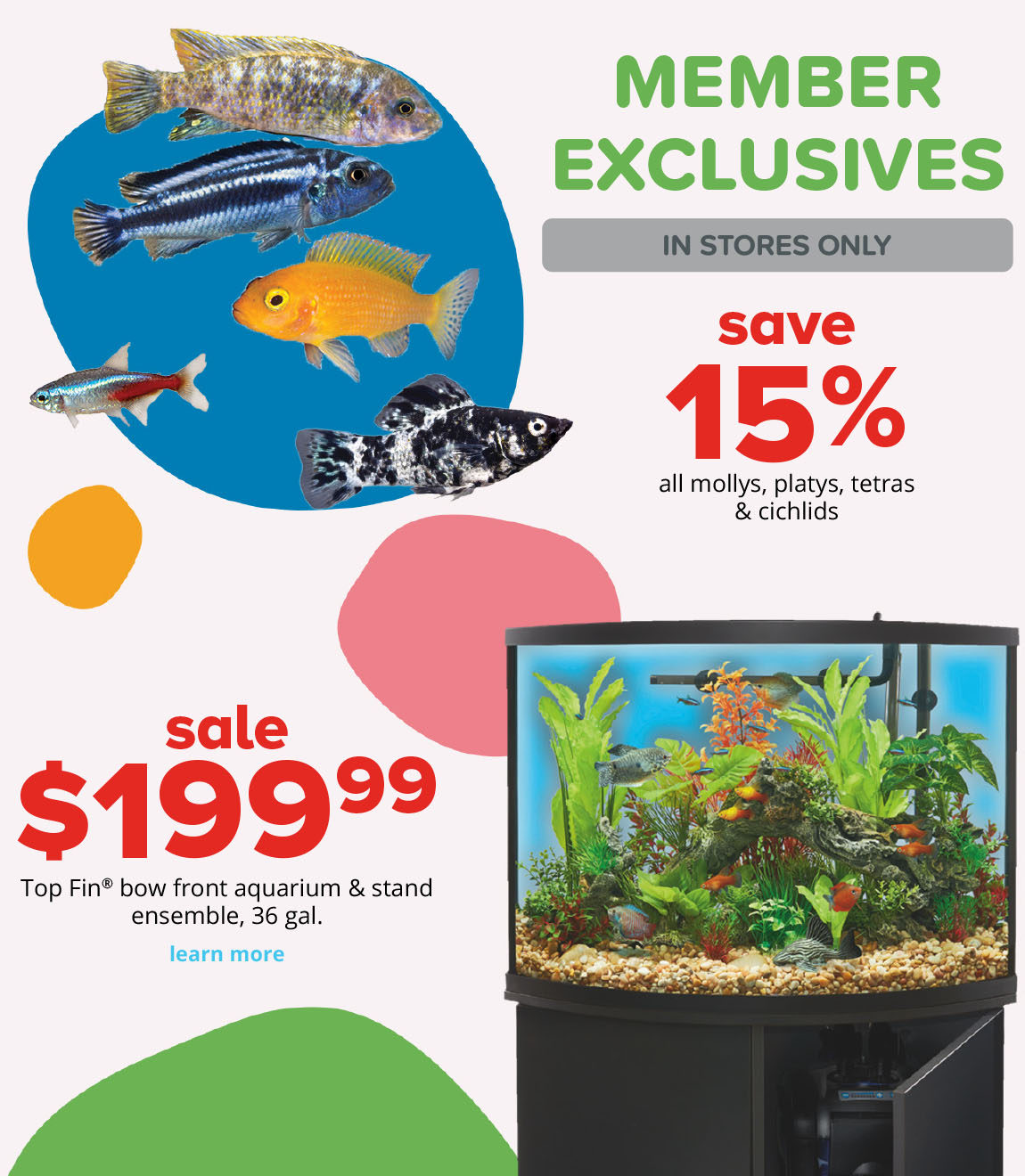 save 15% sale $199.99 all mollys, platys, tetras & cichlids Top Fin® bowfront aquarium & stand ensemble, 36 gal.
