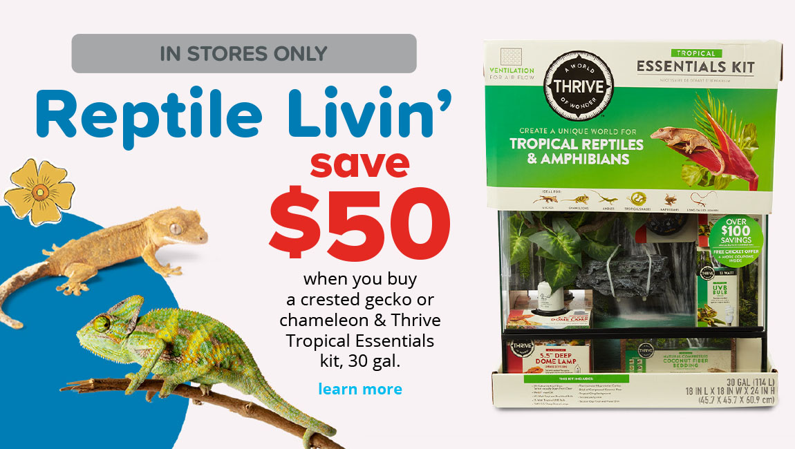 save $50	when you buy a crested gecko or chameleon & Thrive Tropical Essentials kit, 30 gal.