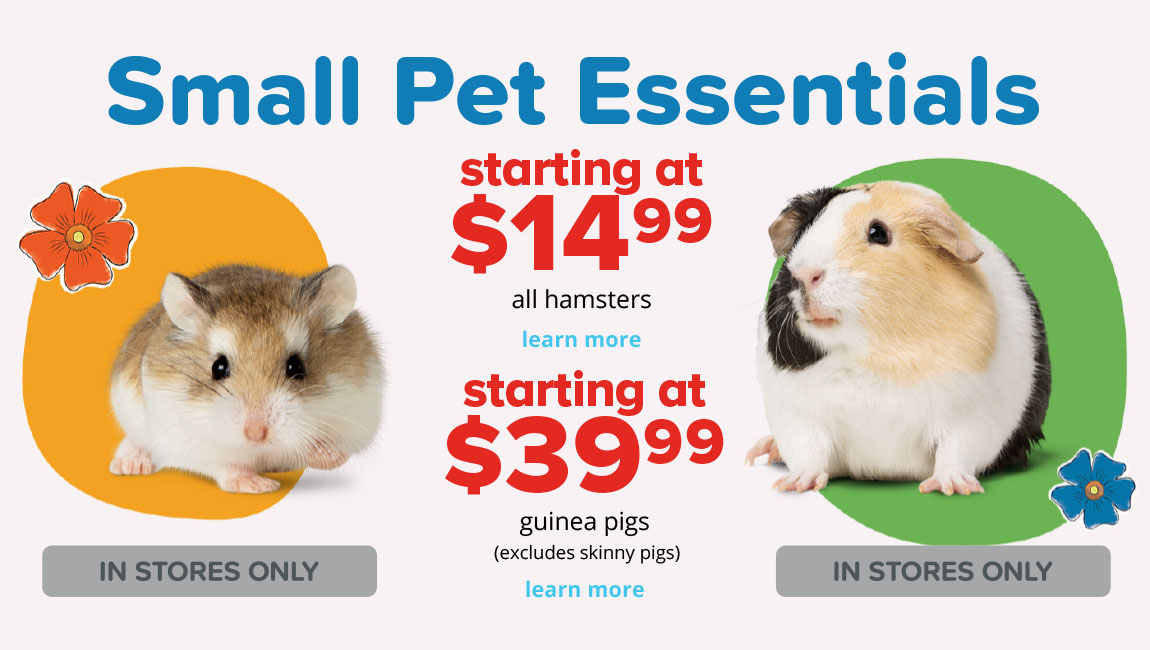 starting at $14.99 all hamsters