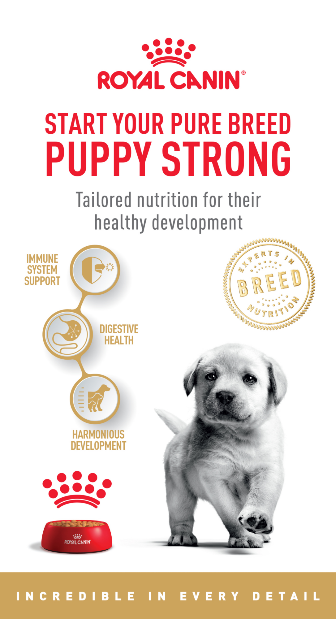 Royal Canin                             Start your pure breed puppy strong                             Tailored nutrition for their healthy development                             Immune System Support                             Digestive Health                             Harmonious Development                             Incredible in every detail